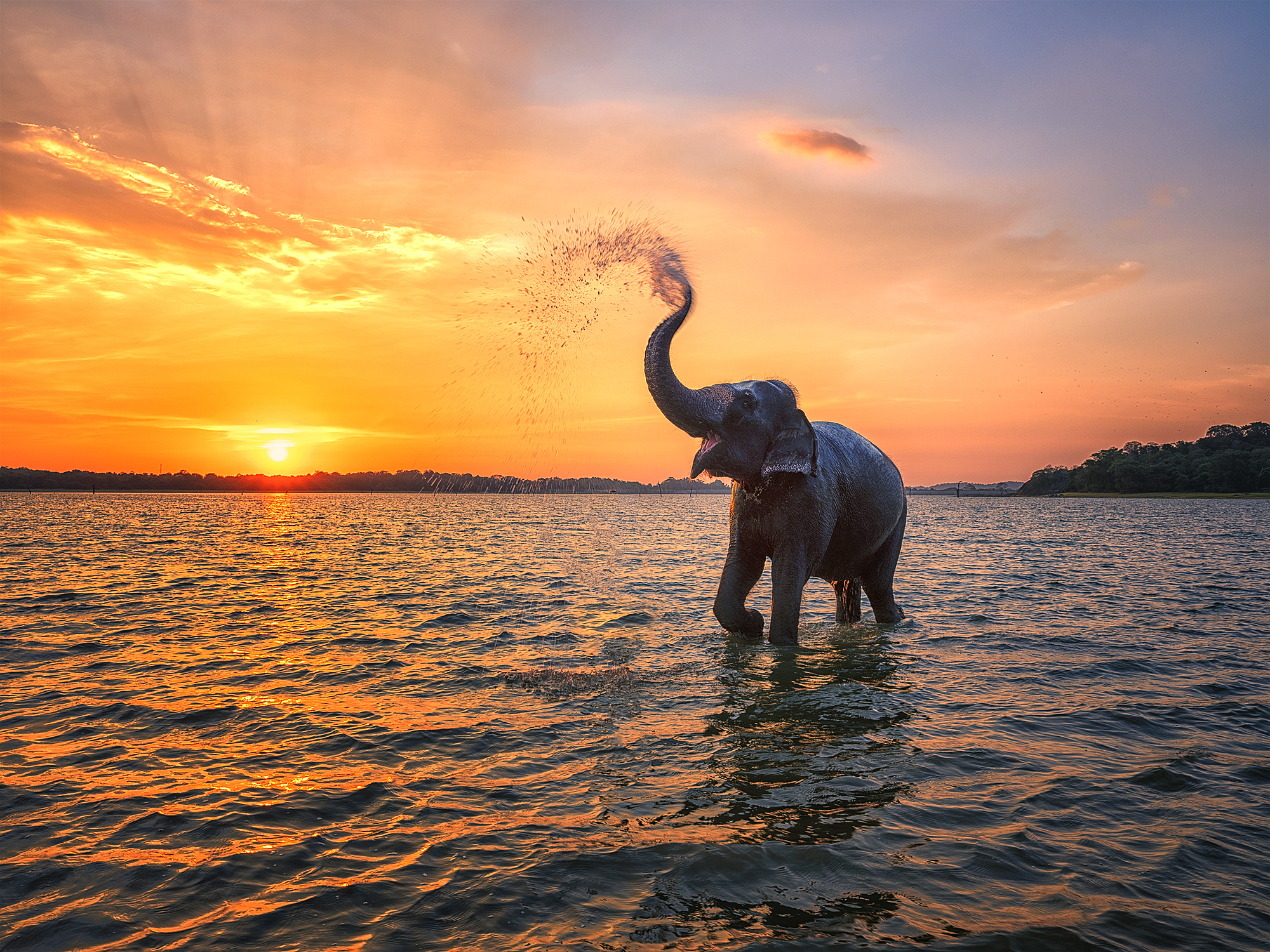 Top 5 photography spots in Sri Lanka
